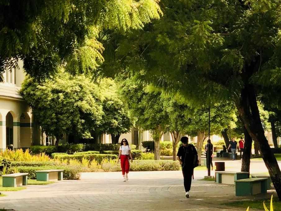 Knowledge Park